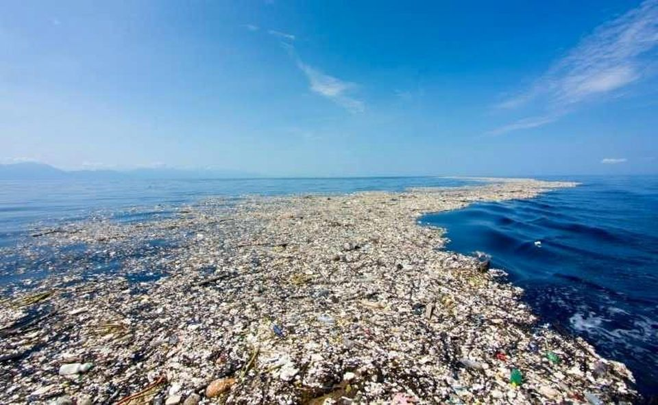 TMOD theme on the Great Pacific Garbage Patch